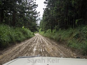 Trip out of Bulolo