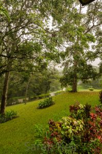 View from our balcony, Pine Tree Lodge, Bulolo