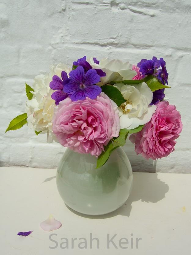 flowers-005