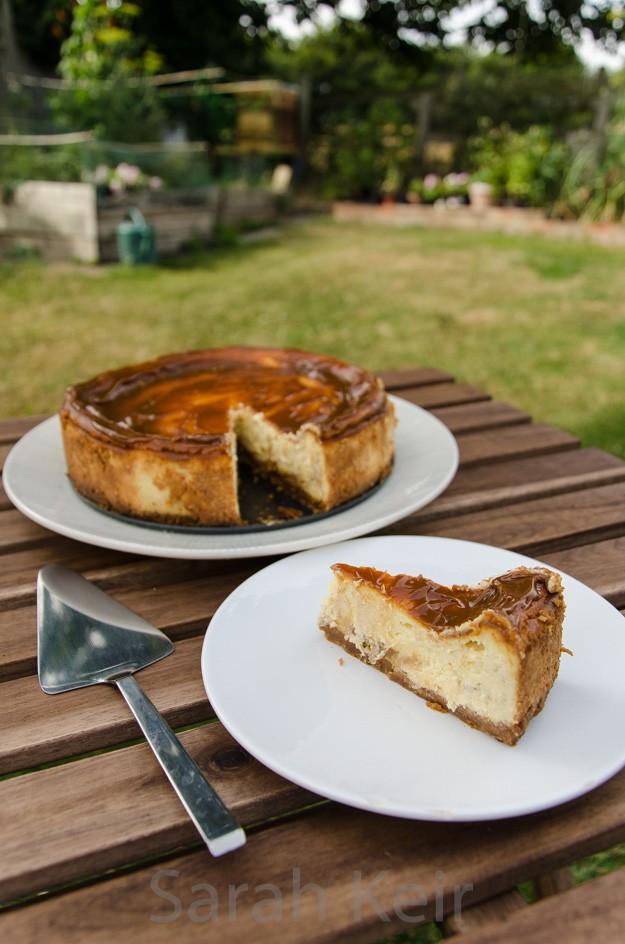 cheesecake-002