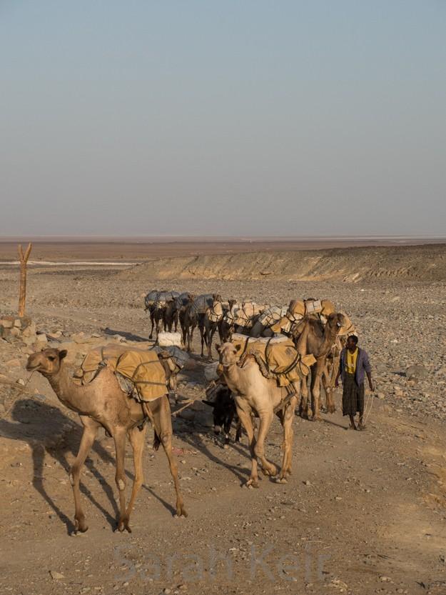 ethiopia-011