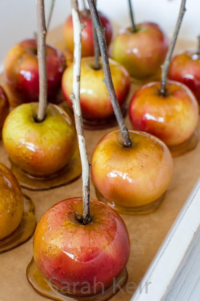 toffee apples-5